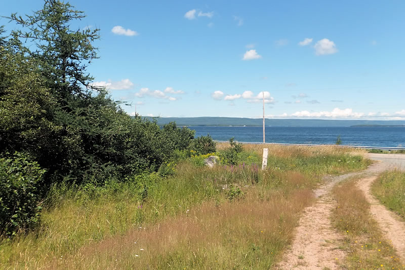 how to become a real estate agent in cape breton